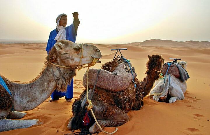 סדנת יוגה במרוקו