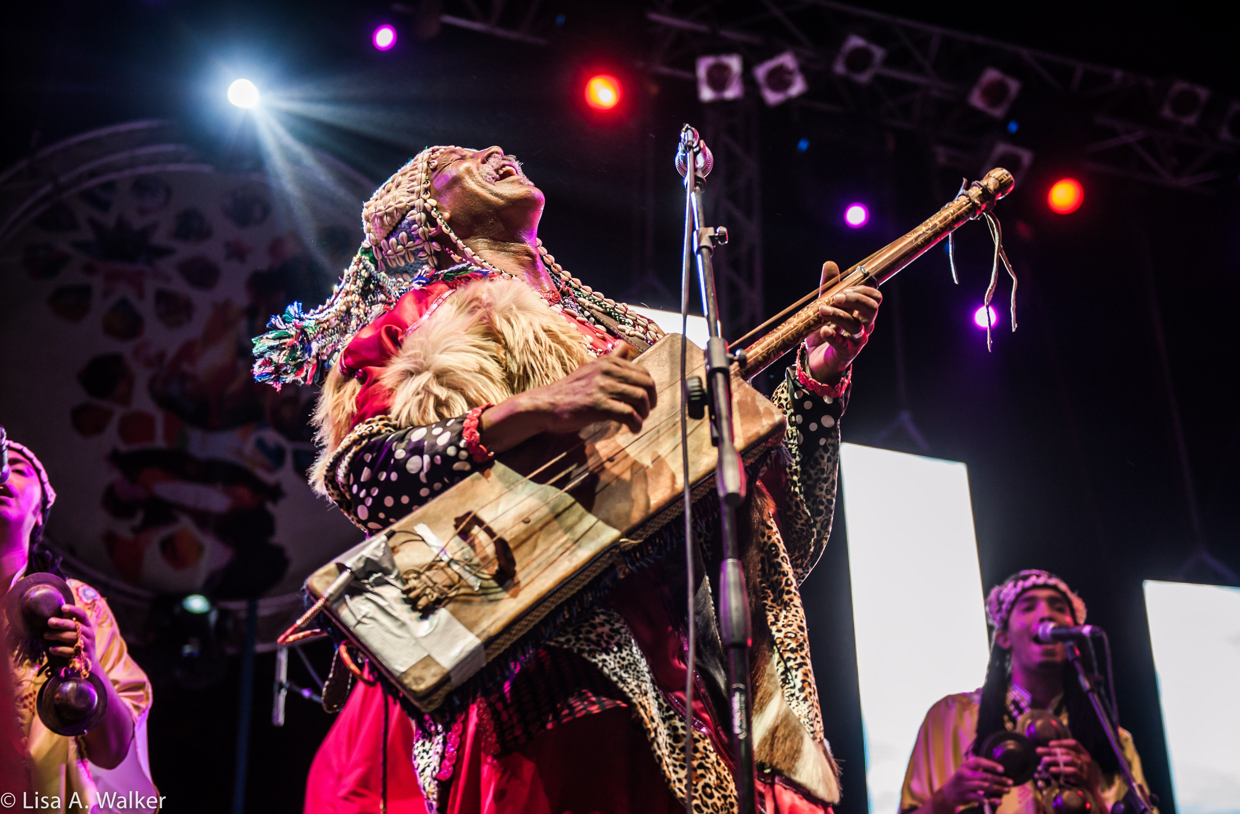 פסטיבל מוסיקה במרוקו
