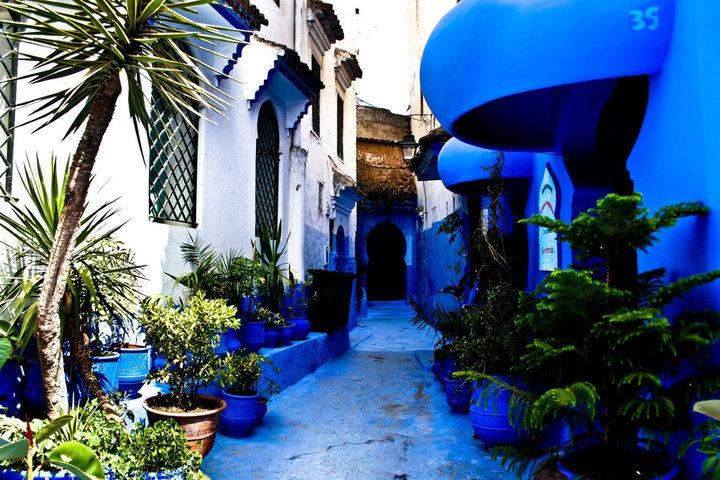 טיול למרוקו עם יוגה טרוולס
