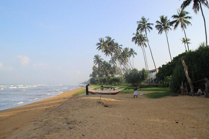 סרי לנקה חוף ים